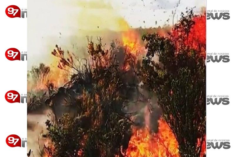 Área de queimada deste ano deve ser maior do que em 2015 na Chapada Diamantina