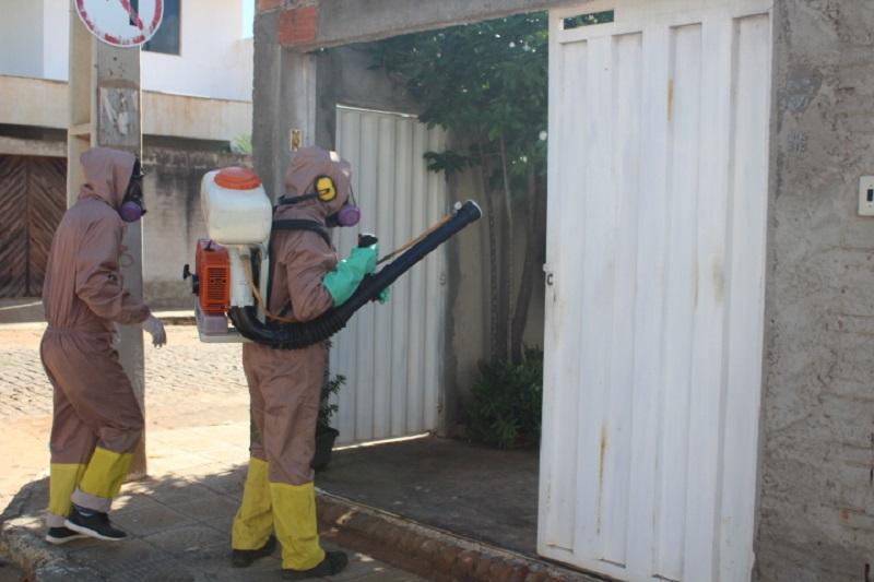 Brumado: Município está entre as cidades da Bahia com maior índice de infestação do aedes aegypti