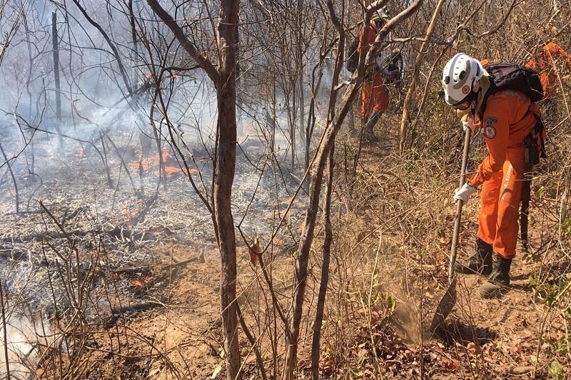 Bombeiros seguem no combate a incêndios no oeste; Chapada tem novo foco